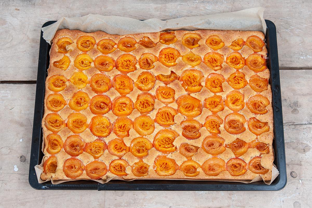 Blechkuchen mit Marillen/Aprikosen